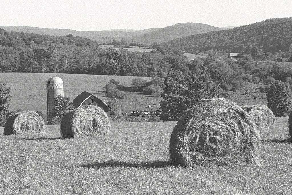 nfr32-milliman-winters-farm