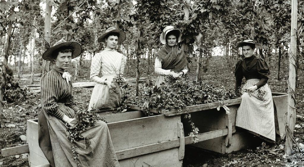 Hop Pickers, ca. 1880-1899